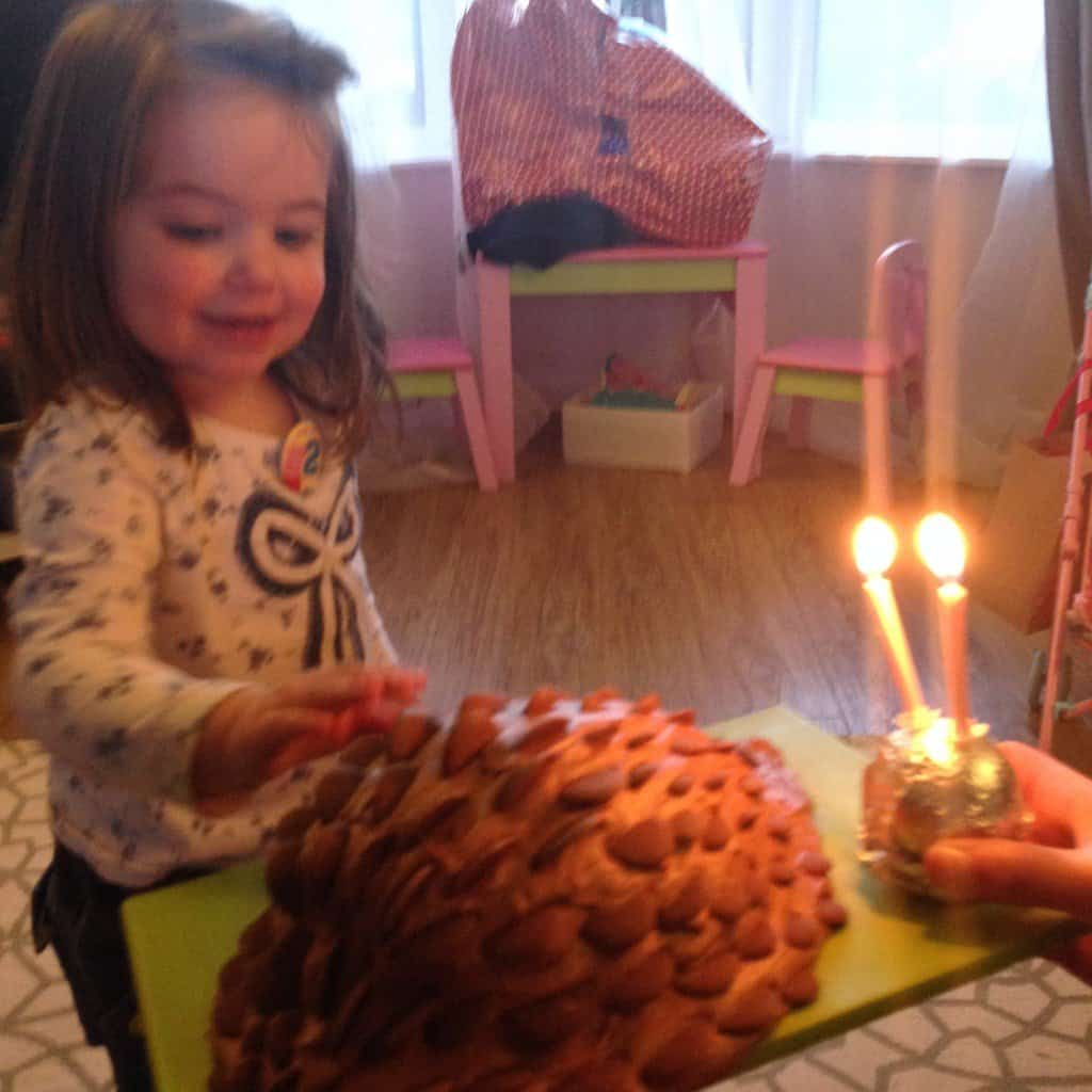 Thea and her chocolate hedgehog cake