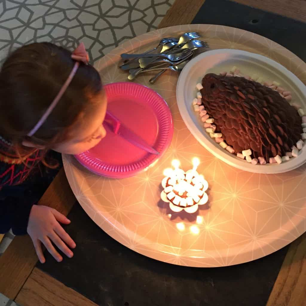 Ava and her chocolate hedgehog birthday cake