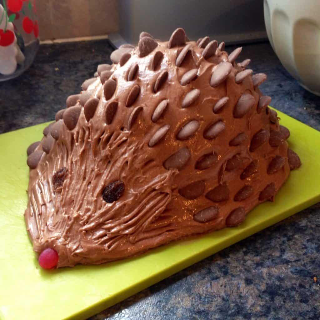Chocolate Harriet Hedgehog birthday cake