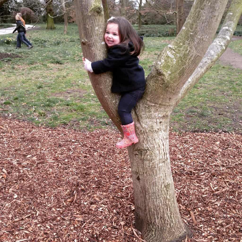 Thea climbing a tree