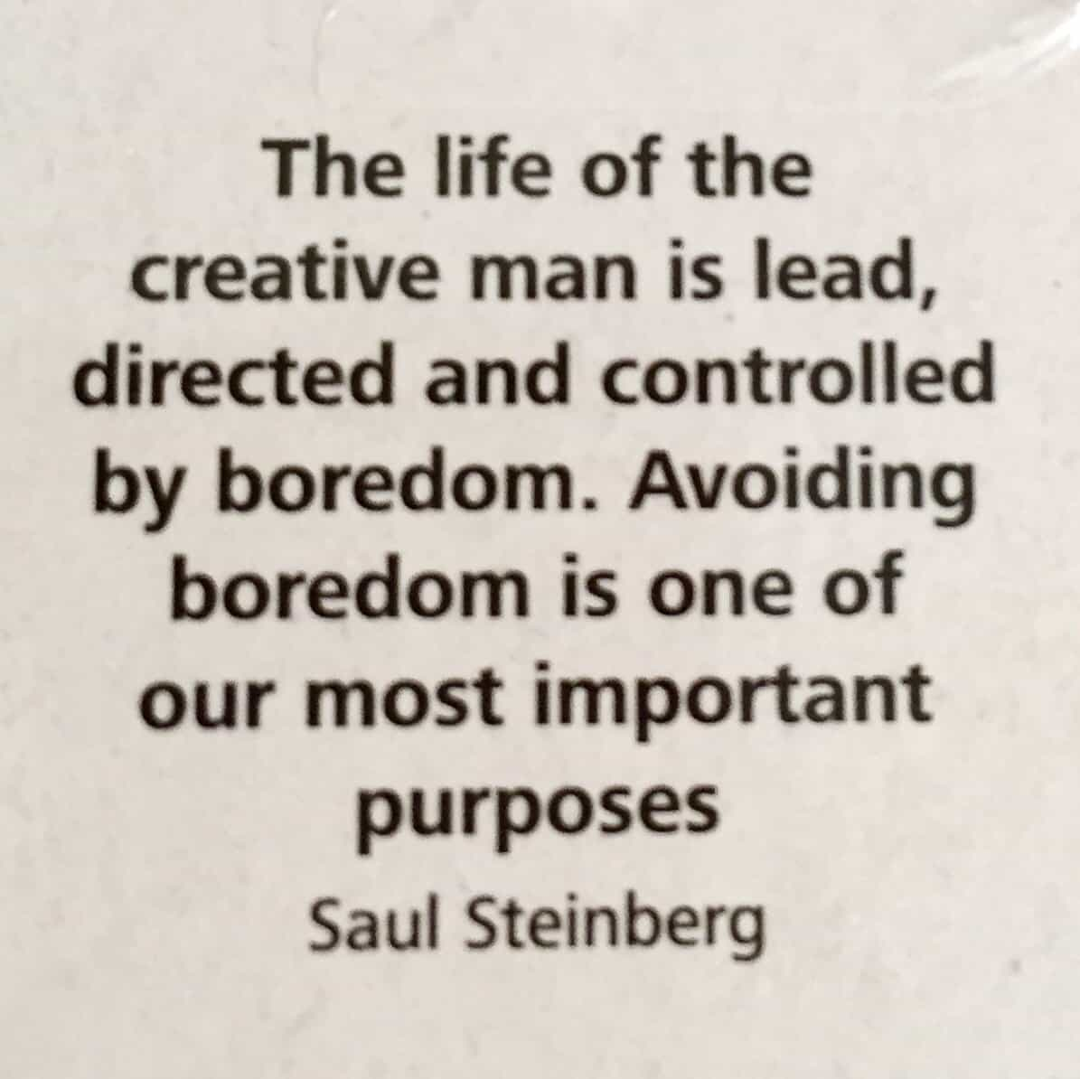 Quote from Saul Steinberg