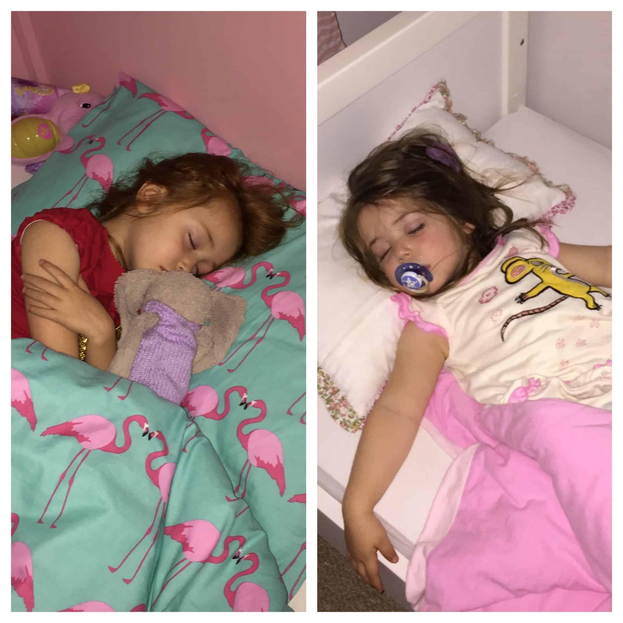 My sleeping beauties