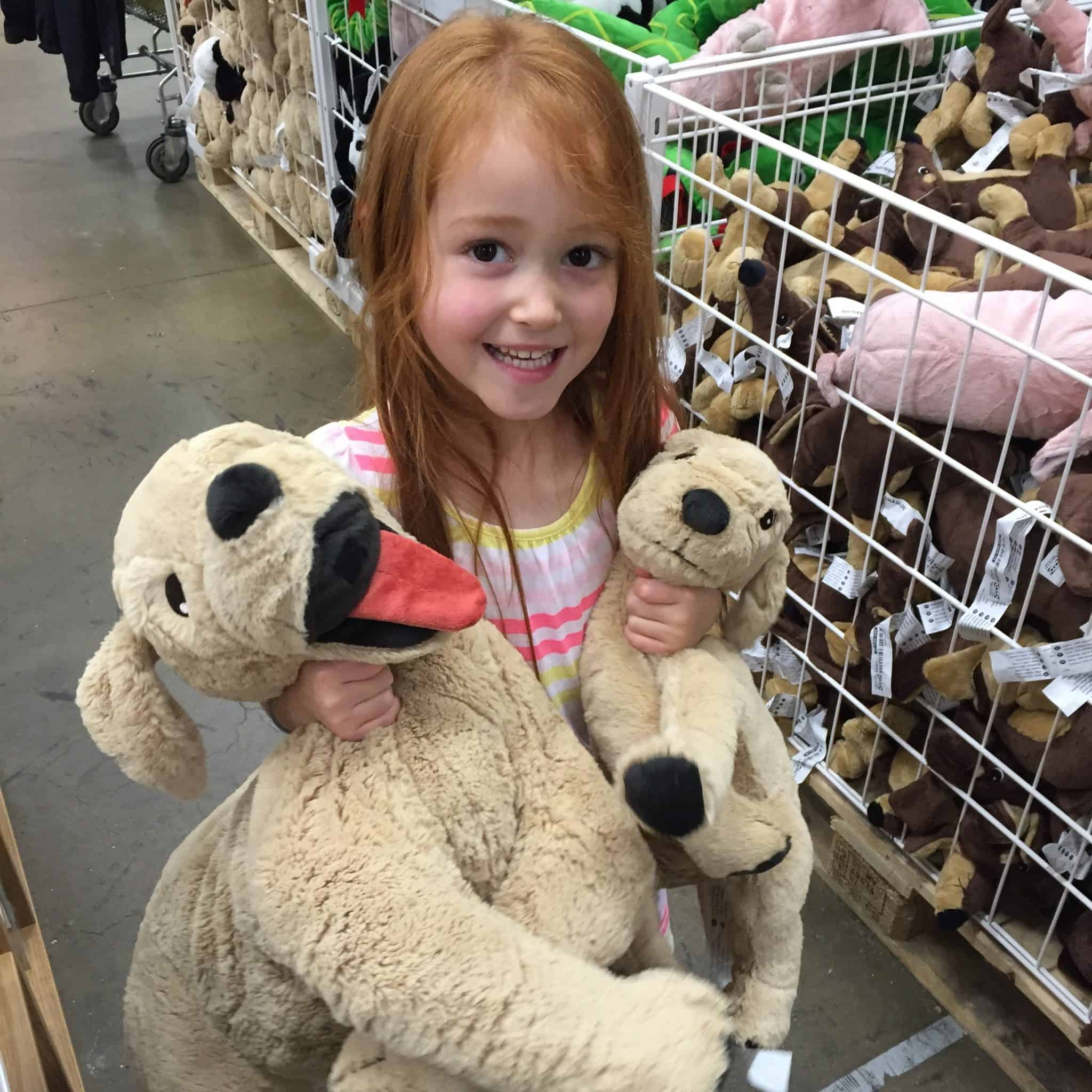 Ava and the IKEA dogs