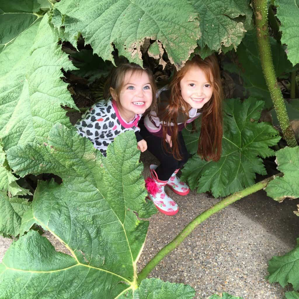Ava and Thea at RHS WIsley