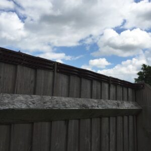 Fence with security spikes