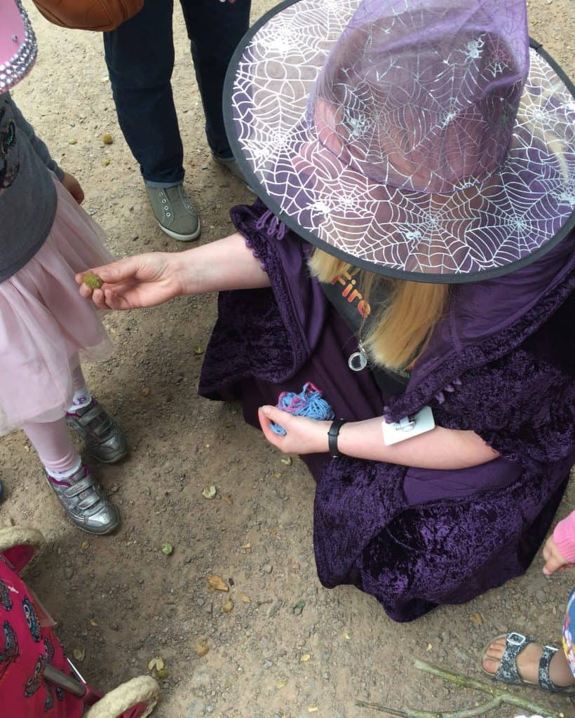 Finding signs of animals at Fire and Air at Salcey Forest