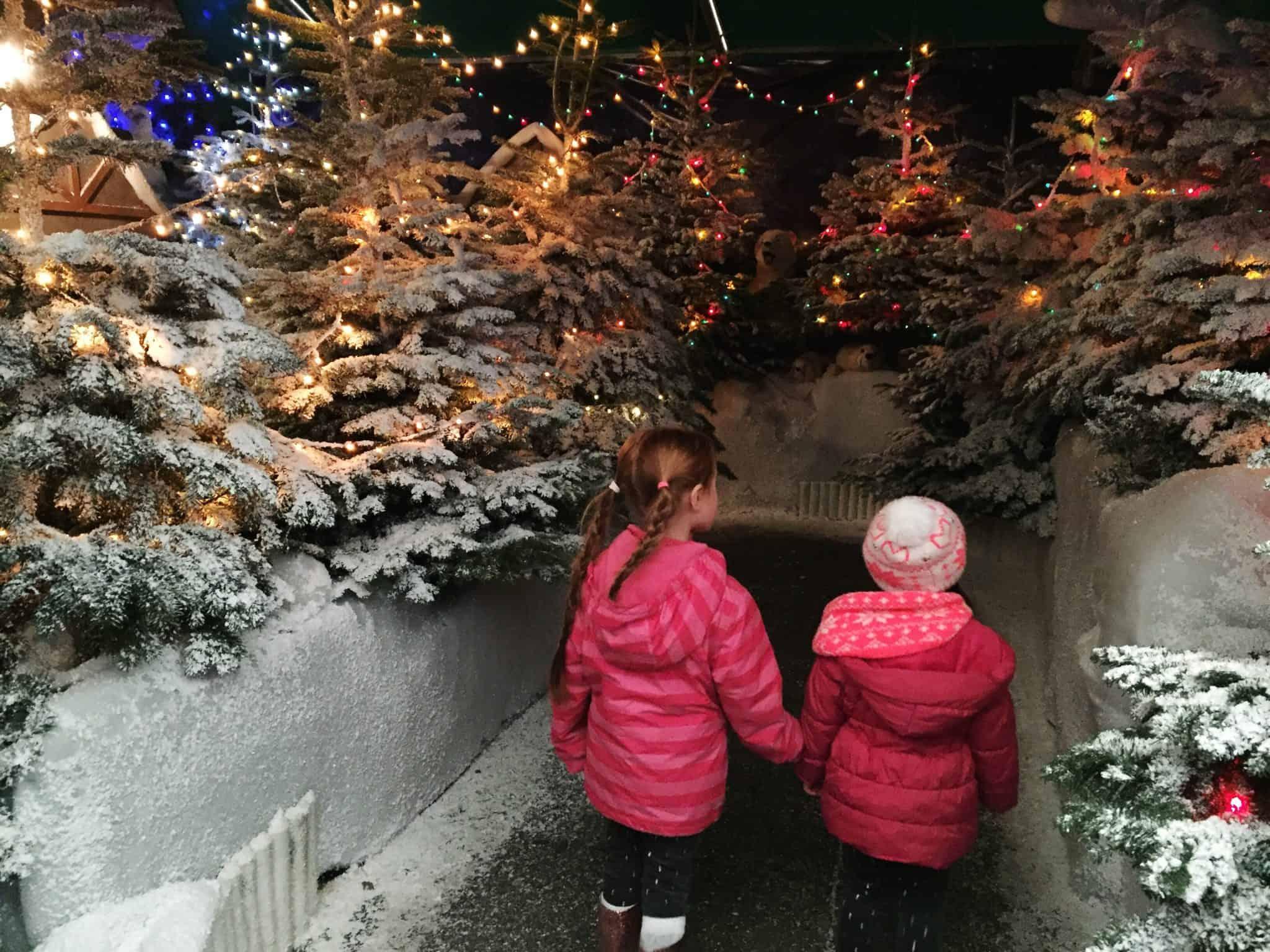 Entering the magical World's End Winter Wonderland