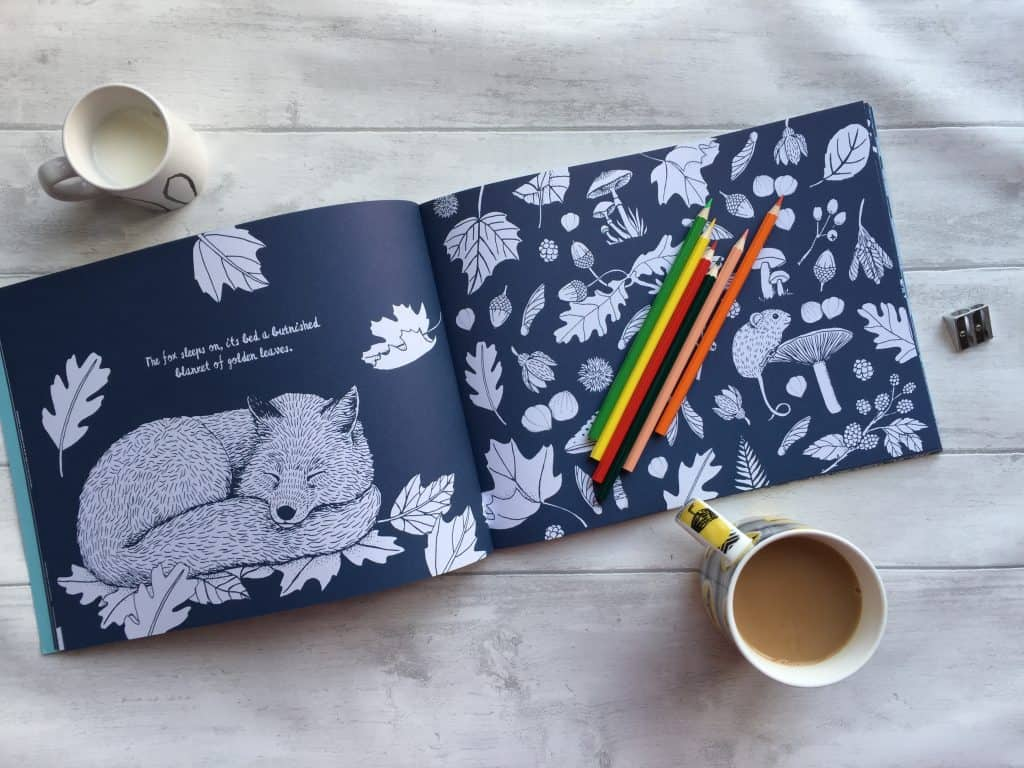 Ready to colour in the fox page of Colour Together Nature