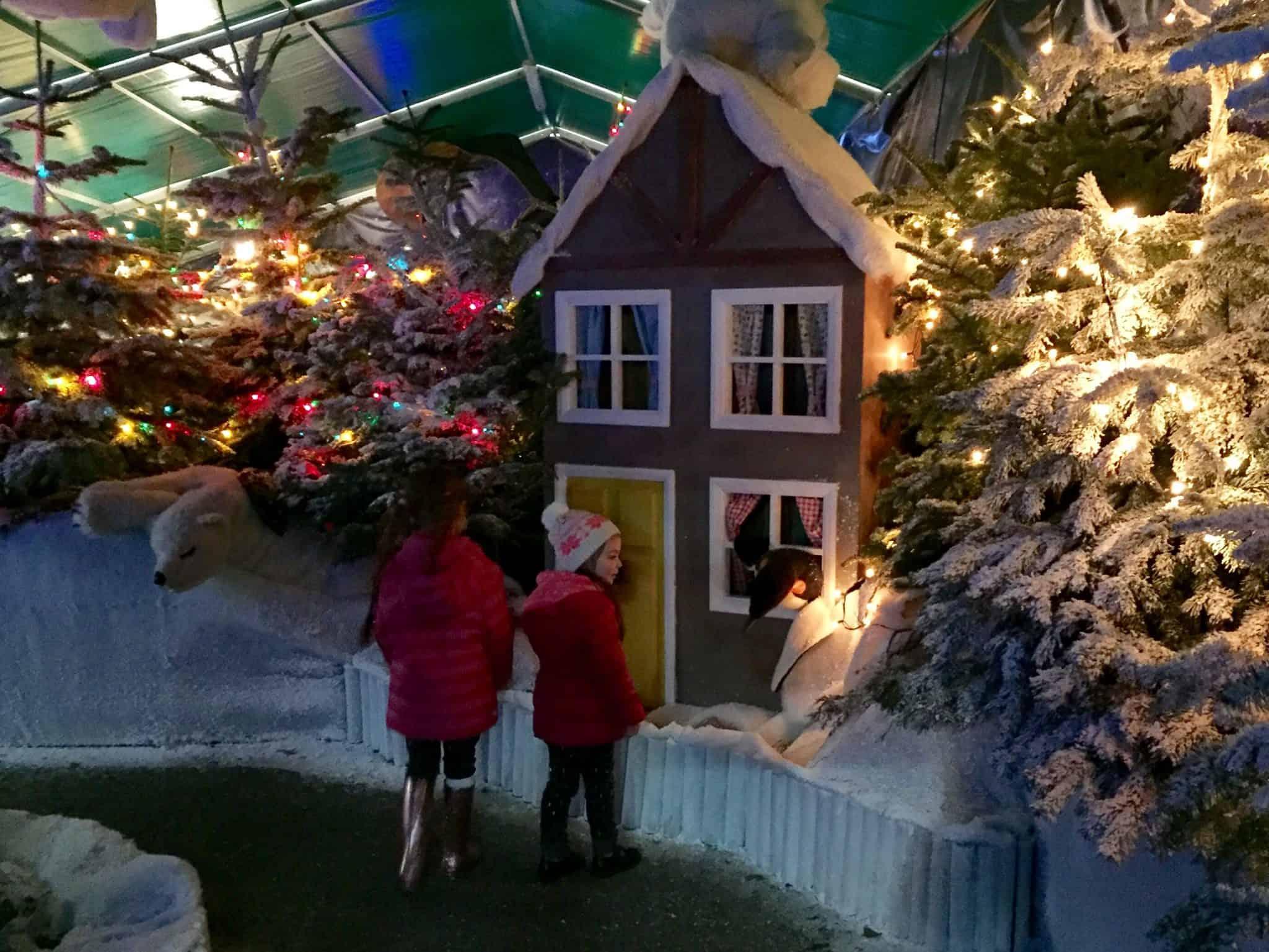Peeping through a window at Winter Wonderland at World's End