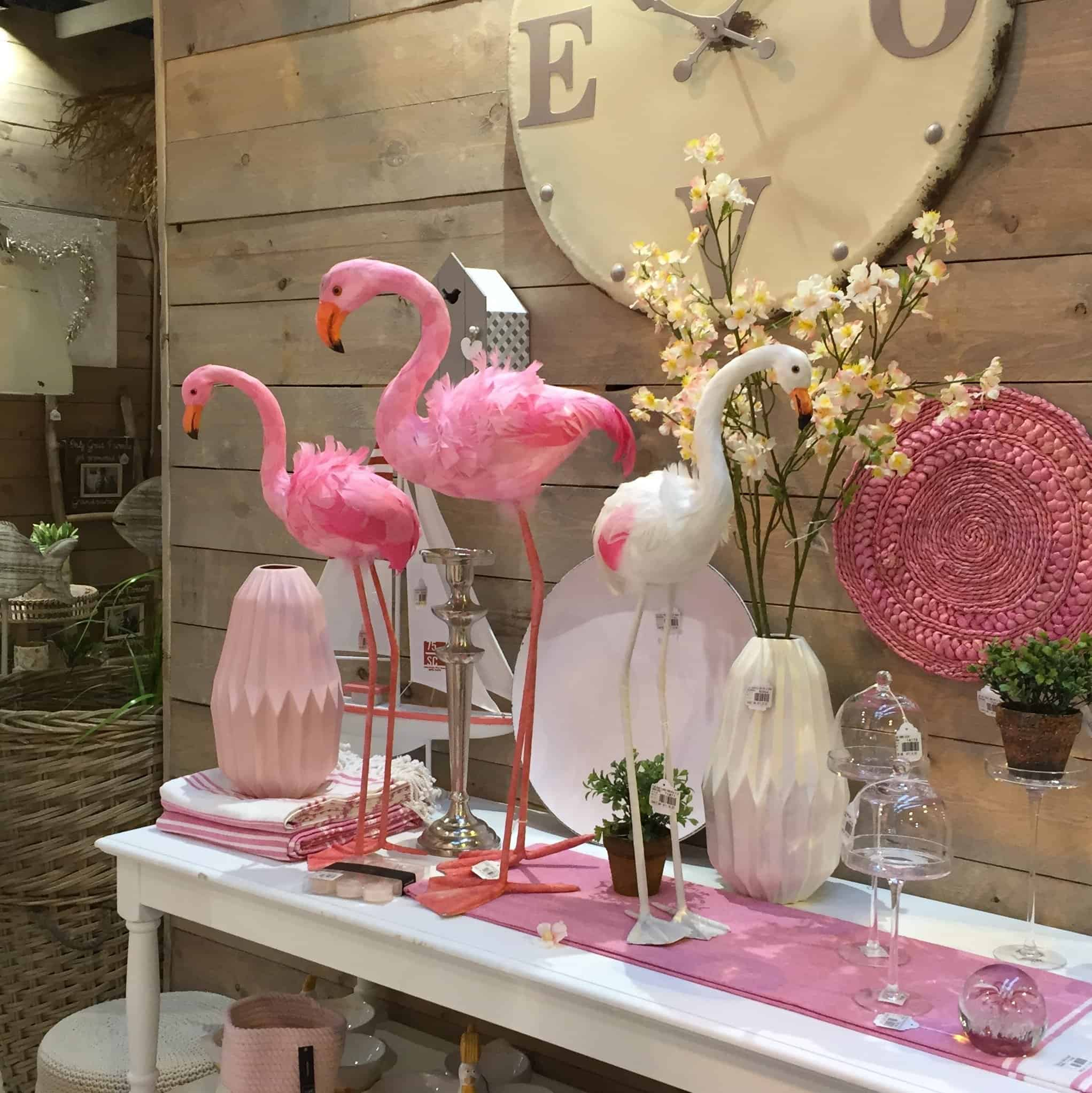 Feathered flamingos at the Spring Fair