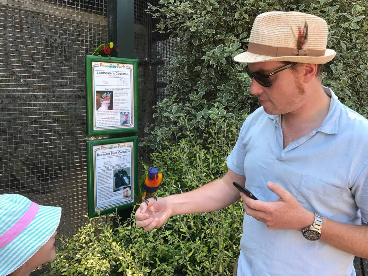 Feeding the birds at Paradise Park Wildlife Sanctuary
