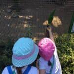 Ava and Thea feeding the birds