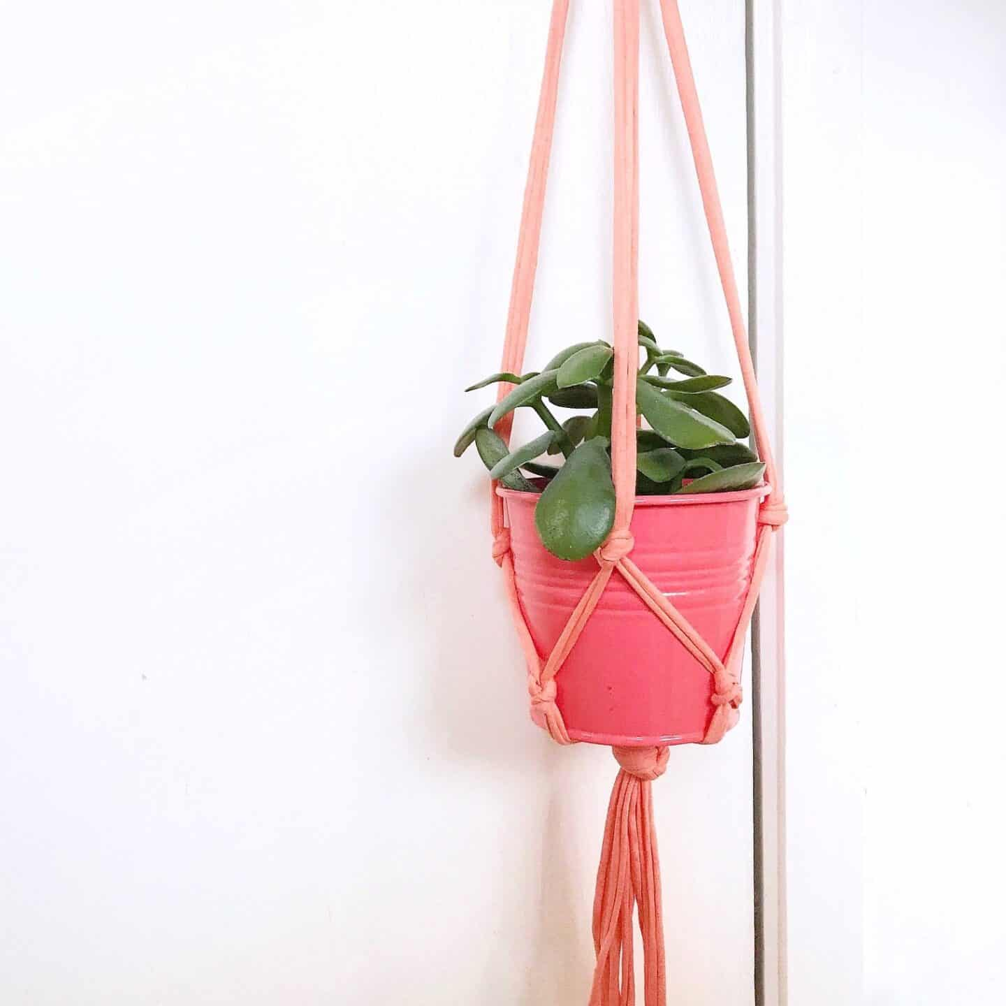 My Coral Pink Macrame Plant Hanger