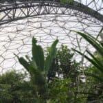 Inside a Biome