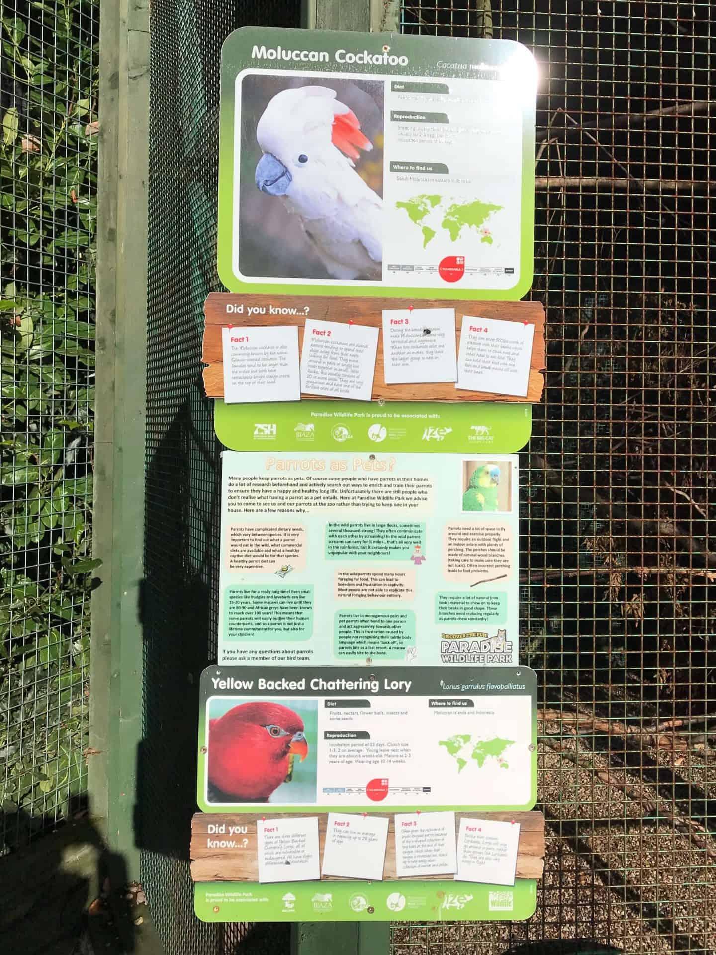 Education at Paradise Wildlife Park