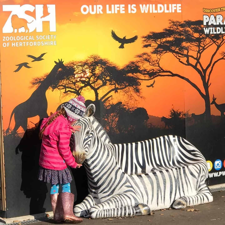 Feeding a pretend zebra