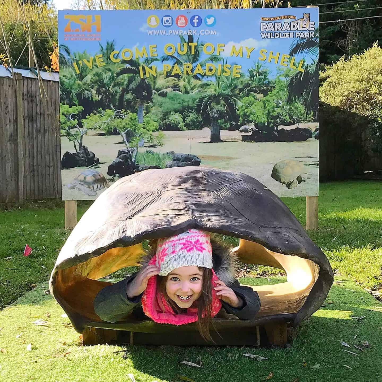 Tortoise fun at Paradise Wildlife Park