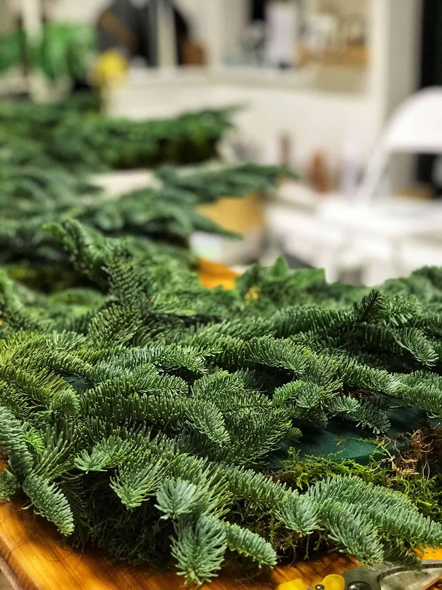 Fir tree trimmings