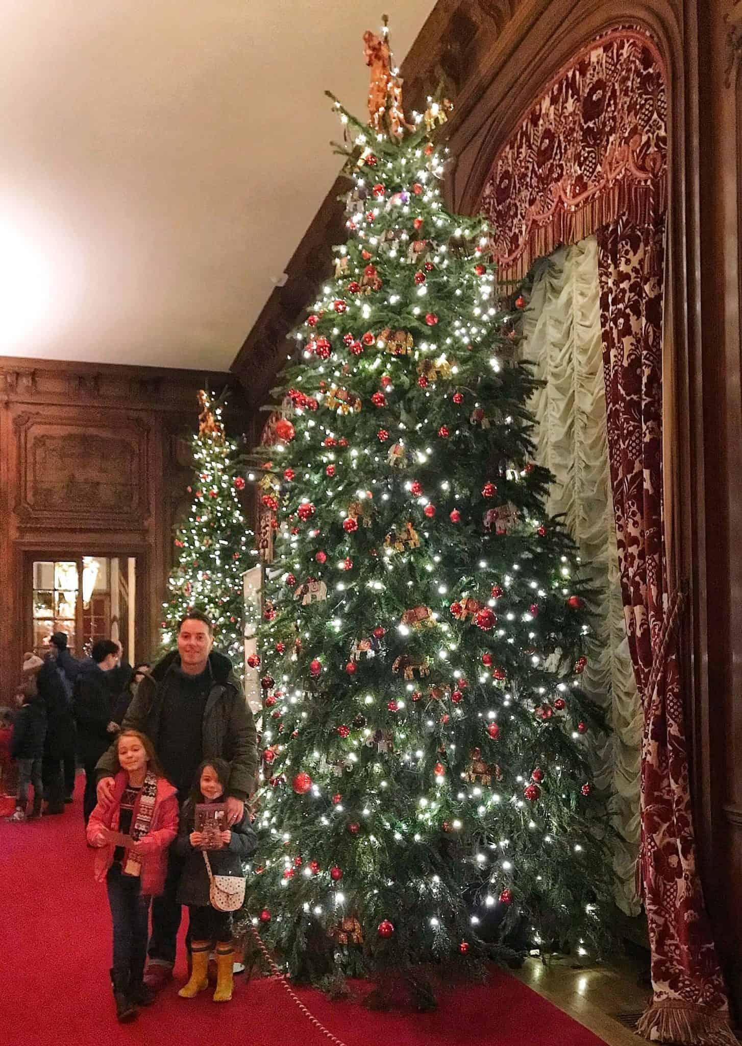 Giant Christmas Tree at Waddesdon Manor at Christmas