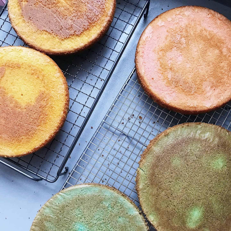 Freshly baked rainbow cakes