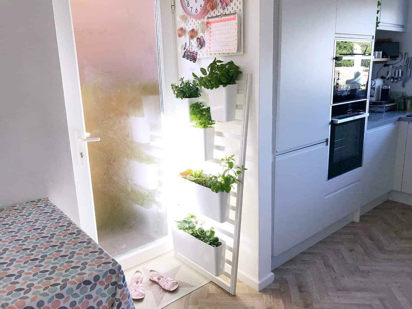 How to Upcycle a Cot Side Into an Indoor Salad Garden