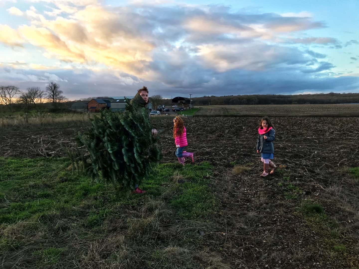 Taking our Christmas tree home