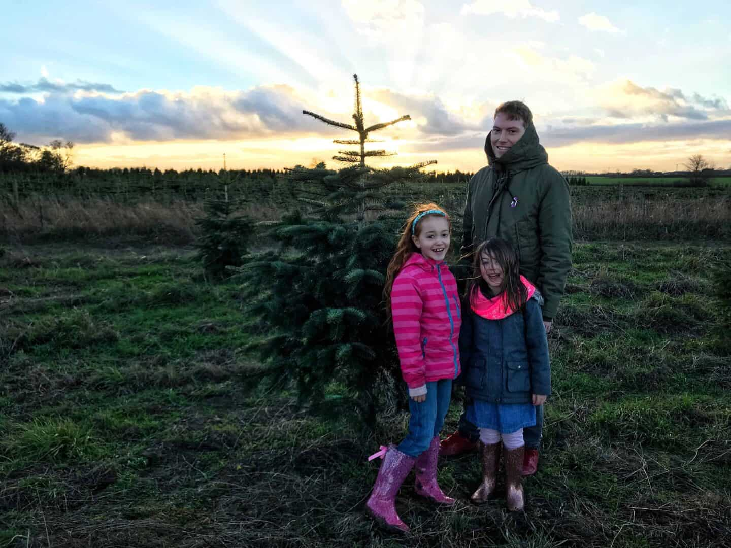 Finding Our Perfect Christmas Tree